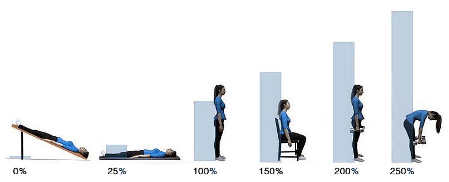 pressao no disco intervertebral de acordo com a posiçao do corpo