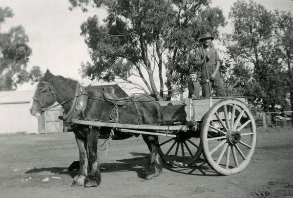 Baxters Horse and Cart Photo_edited.jpg