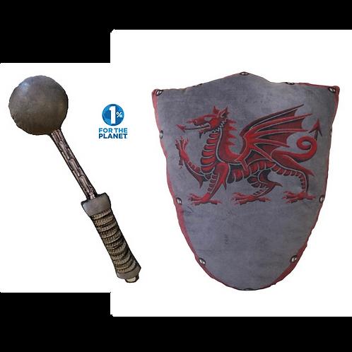 Chain Mace & Pendragon Shield Set