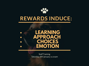 Importance of Rewards