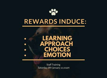 Importance of Rewards