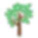 tree_33680.png