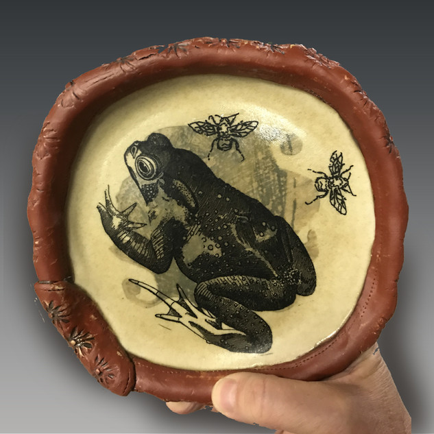 Decal Frog Plate