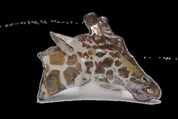 Giraffe_2015 2.png