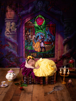 Beauty and the Beast Inspired