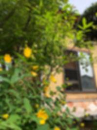 埼玉県川越市 普門堂鍼灸院埼玉院 治療室外観