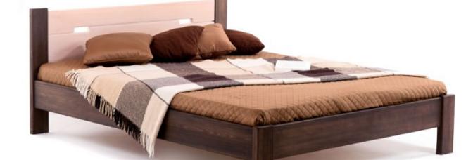 Кровать Селена Плюс Комби Бук массив Клен
