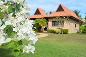 Vuokraa huvila thaimaassa