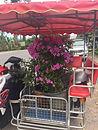 Vuokraa talo Thaimaasta - Thaimaan vuokra-asunnot