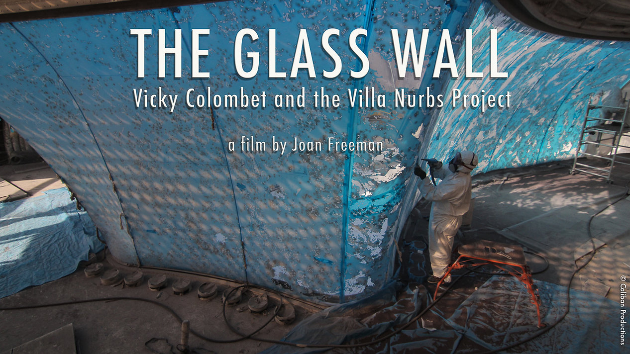 The Glass Wall, Vicky Colombet, theglasswallmovie