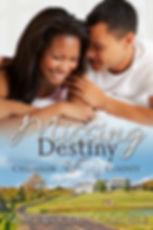 Missing Destiny eBook (2).jpg