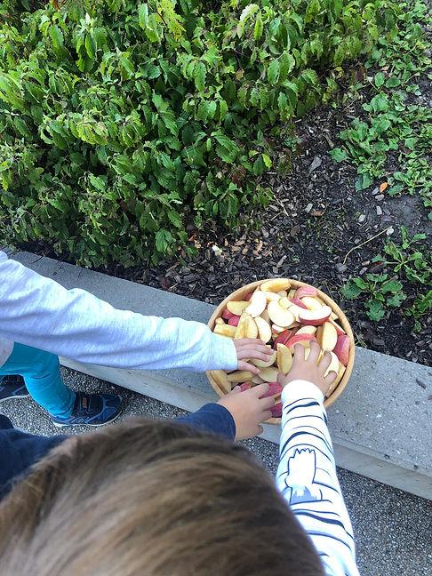 croque pomme 2019.jpg