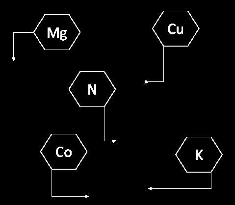 formula-mora.png