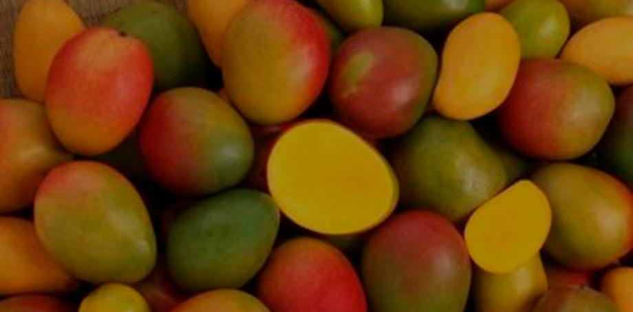 mango_2.png