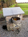 Ballyquaid_Laois_Mass Pit and memorial_P