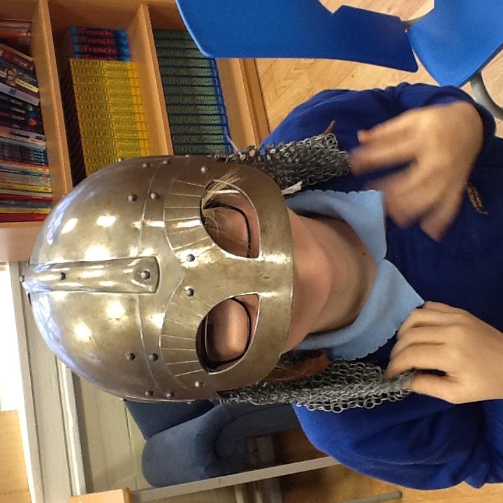 Viking Visitor