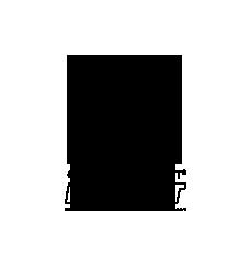 Compressport Logo.png