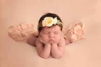 Nellie - Newborn Training