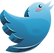 Twitter (Face) (1).png