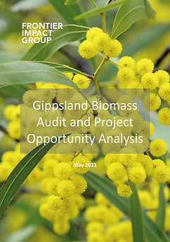 Frontier Impact Group Gippsland Biomass Audit Project Opportunity Analysis
