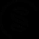 Skin and Health Studio - logo.png