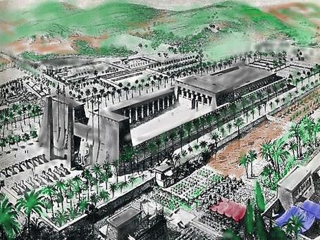 Tra passato e presente: la Biblioteca Alessandrina