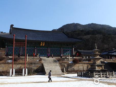 Tra buddhismo e patrimonio culturale: il Tempio di Haeinsa