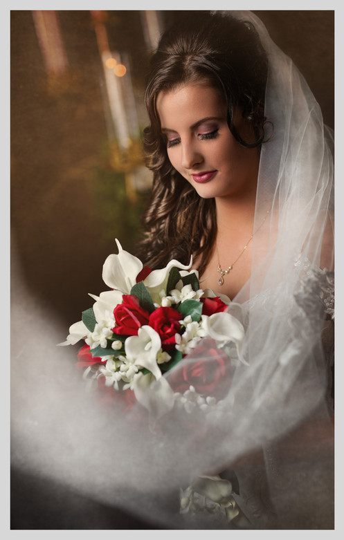 Bridal Portrait   Omaha Wedding
