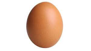 NPR to Start New Morning Talk Show Hosted by a Literal Unhatched Chicken Egg