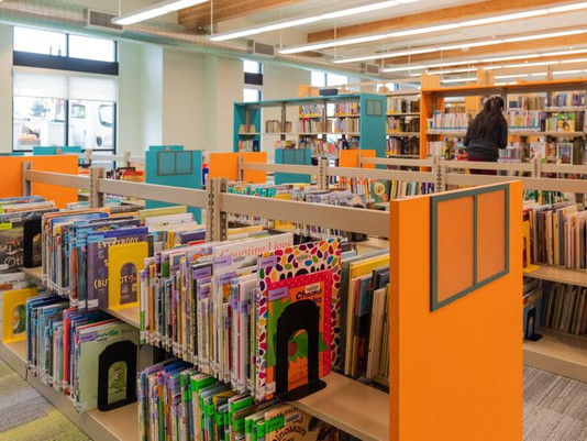 Libraries to add DVDs in 2026