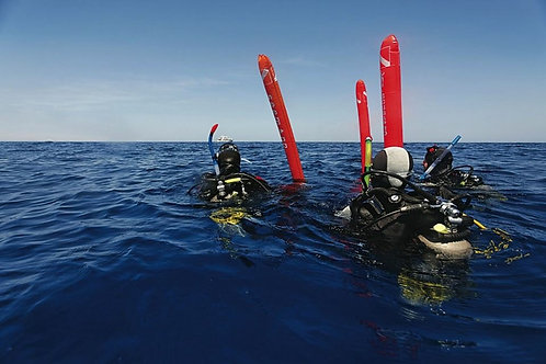 2T Morning Boat Dives(Gear not Included)船潛