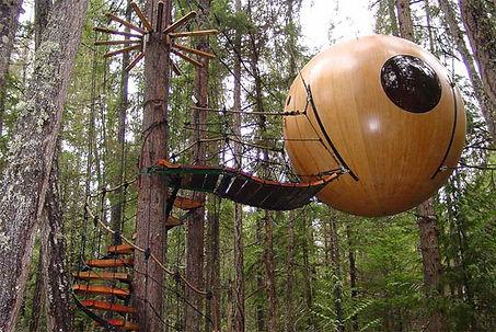 Treehouse, Tree House, adventure travel, bucket list