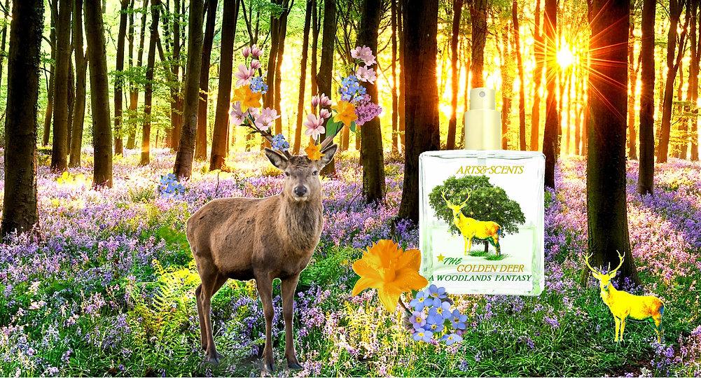 spring deer woodland longrun A&S.jpg