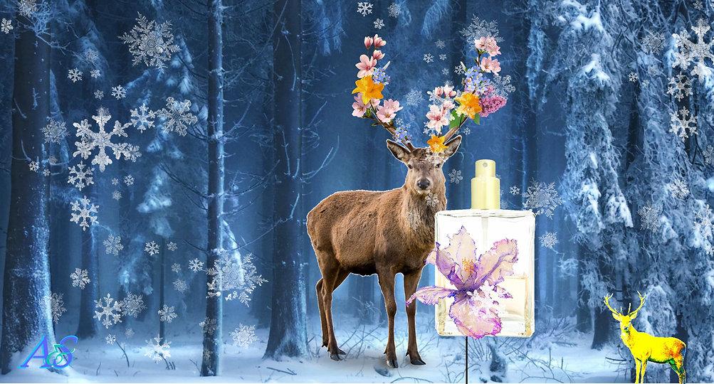 winter deer woodland longrun A&S.jpg