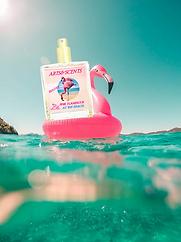 pink Flamingos swim cute.png