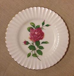 Z301 Plate
