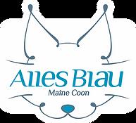 Maine Coon Azul, Gatos Maine Coon, Gato Gigante