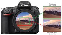 Full Frame Camera vs. APS-C Camera