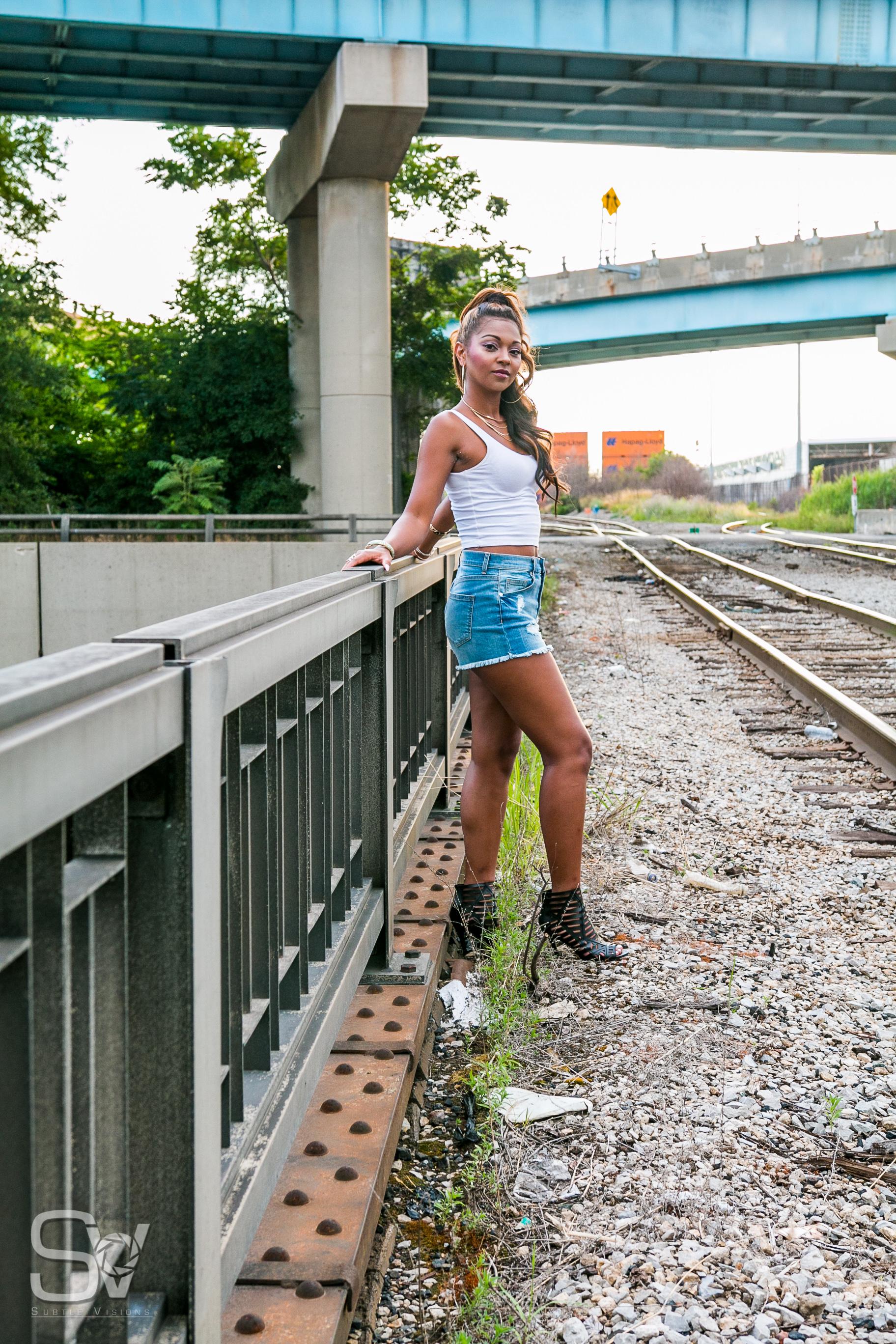 Janet Johnson tracks & rail 2016-17