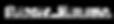 SV White Transparent Logo Title.png
