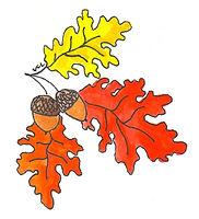 fall leaves and acorn.jpeg