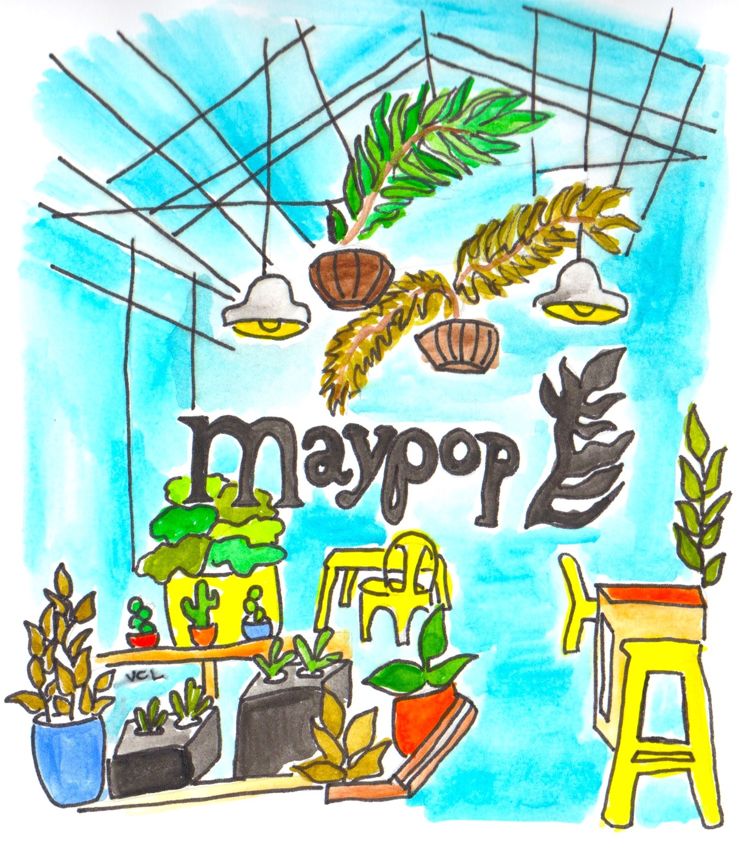 Maypop