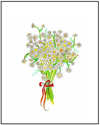 Chamomile Bouquet
