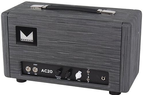 Fractal FM3 - AC20 Ultimate Preset