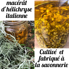 Cap sur le macérât d'hélichryse italienne de la savonnerie