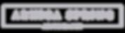 ASP 2019 Logo for Web copy.png