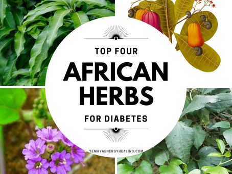 Top 4 African Folk Medicinals for Diabetes