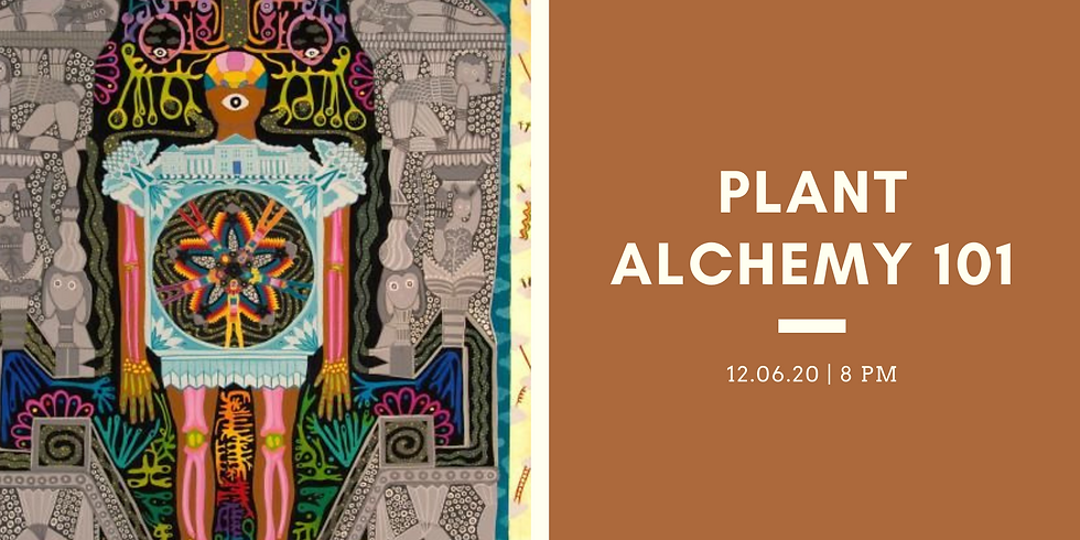 Plant Alchemy 101: How the Spirit and Physical Compenents of Plants Merge Together