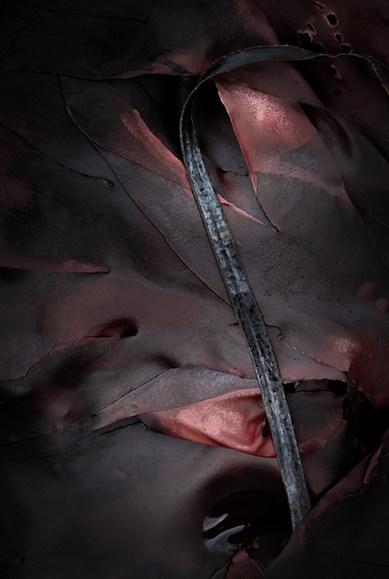 Kelp: autumn tape