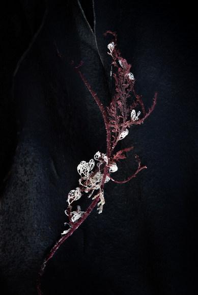 Kelp: embroidery